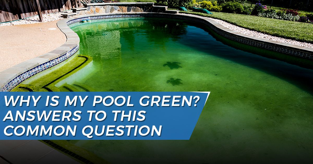 Green Pool Water | Why Is My Pool Green?
